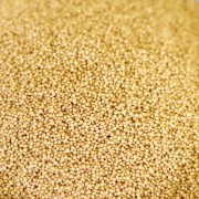 Organic Amaranth - 88 oz - #10 can