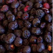Blueberries, Freeze Dried - 10 oz -  #10 Can