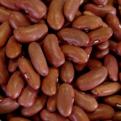 Kidney Beans, Dehydrated - 4.75 lb - #10 Can